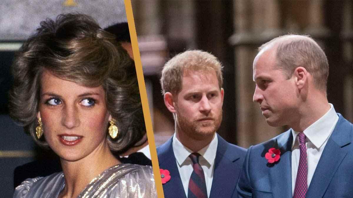 Harry et William : Diana aurait été complètement « dévastée » par leur dissension.