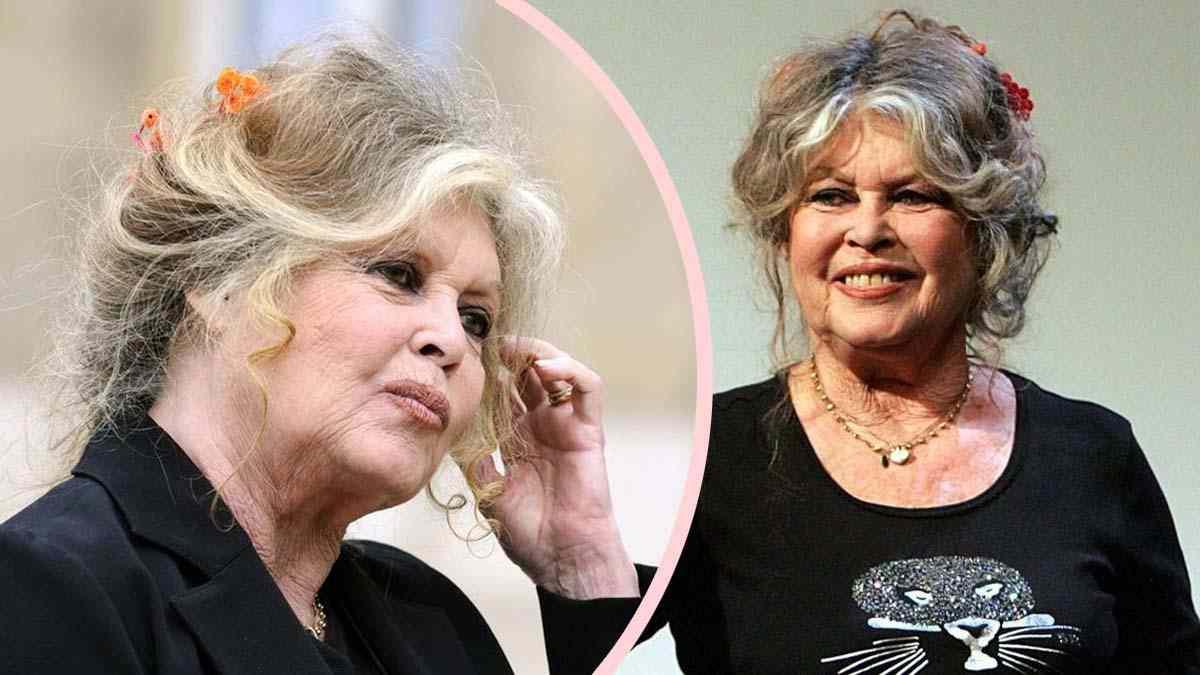 Affaire d'escroquerie : Brigitte Bardot reconnait ses erreurs mais n'abandonne pas les charges.
