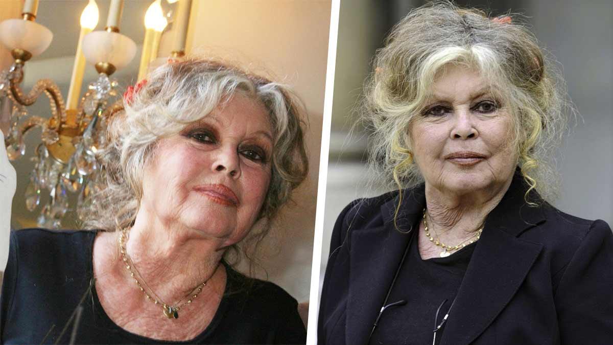Brigitte Bardot : ses directives pour ses funérailles. « [Je ne veux pas de] 'mausolée à la Elvis' »